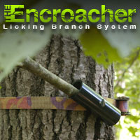 Encroacher - Licking Branch System